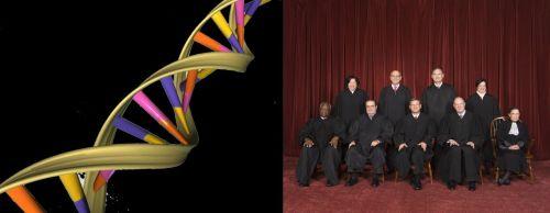 DNA Court